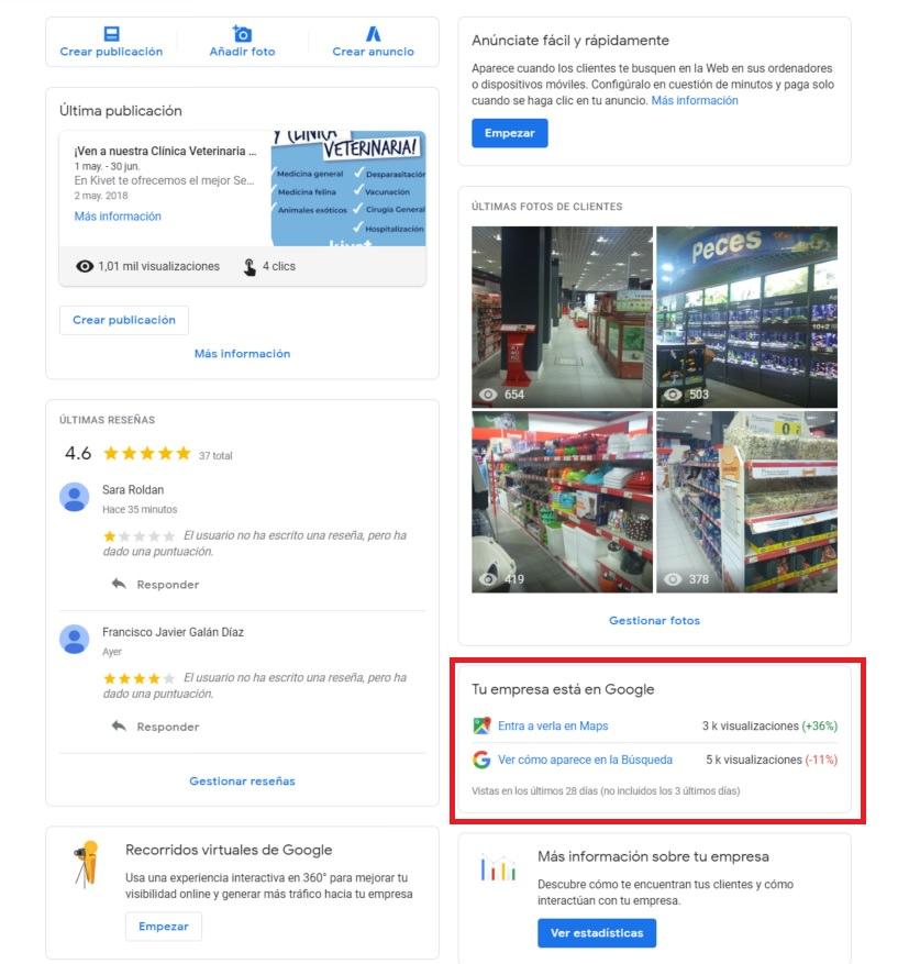 estadisticas-google-mybusiness-busqueda